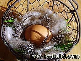 Make Easter baskets: baskets