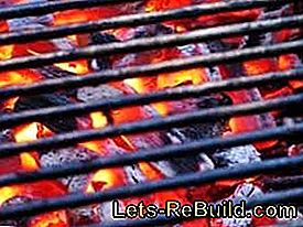 Health, Environment and Barbecues - Basic and Environmental Tips for the BBQ Party: environmental