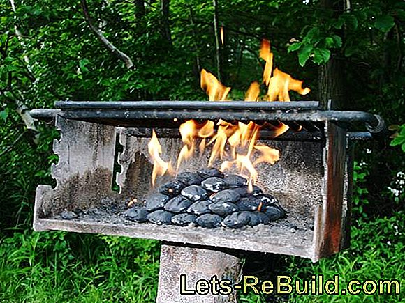 Health, Environment and Barbecues - Basic and Environmental Tips for the BBQ Party: barbecues