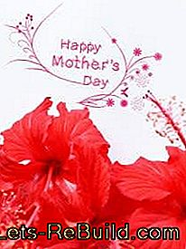 Print templates for Mother's Day card for printing: printing