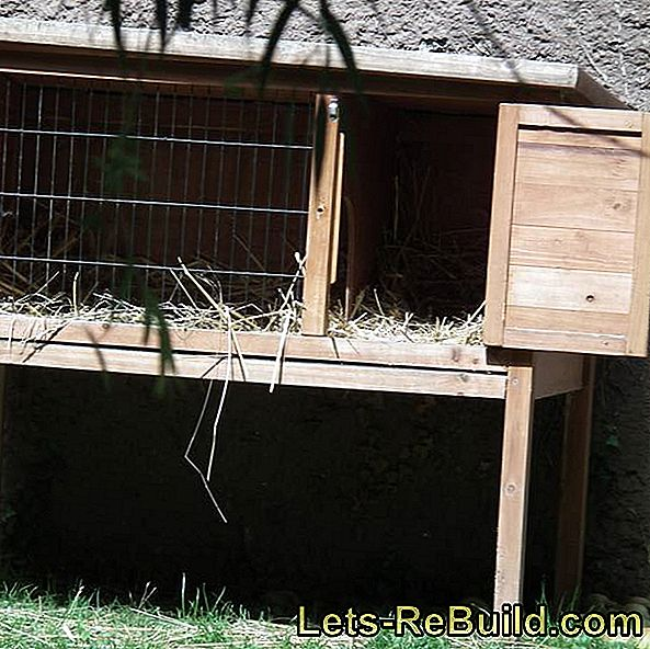 Build rabbit hutch yourself: yourself