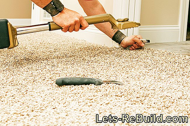 Loosely Apply Carpet » You Should Pay Attention To This