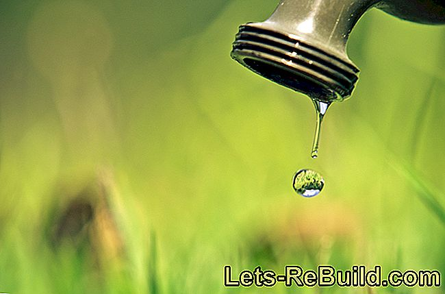 Save Water » Valuable Tips And Tricks For Saving