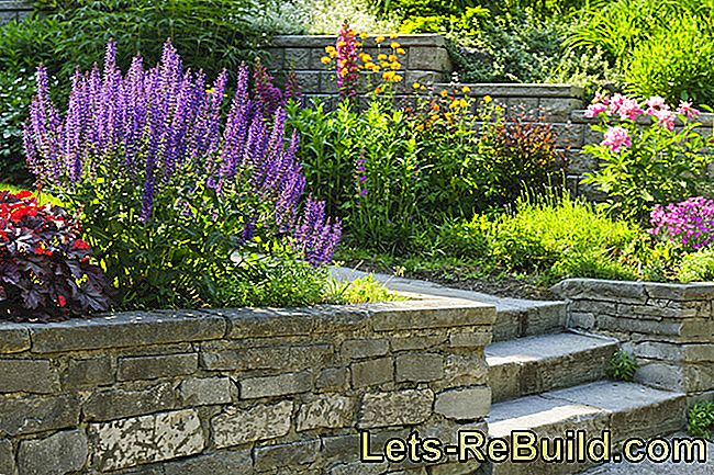Stone Wall In The Garden » All About Gabions In The Garden