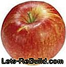 Apple Variety Overview - Description of the most popular apple species with harvest time: variety
