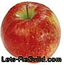 Apple Variety Overview - Description of the most popular apple species with harvest time: most