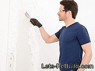 Brushing instructions: Remove paint with paint stripper: instructions