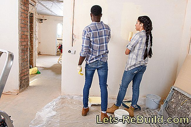 Painting The Interior Plaster » Which Color Is Suitable?