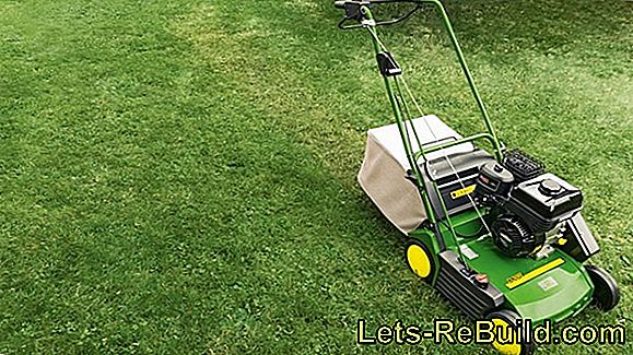 Scarifier Test: Lawn Fan Compared