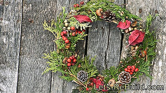 Keep Christmas wreath fresh: you can do that