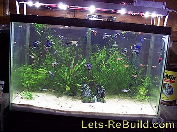 Aquarium Led Lighting Build Yourself » Instructions