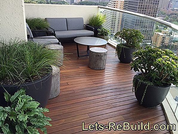 Garden On The Balcony » Regulations, Plants & More