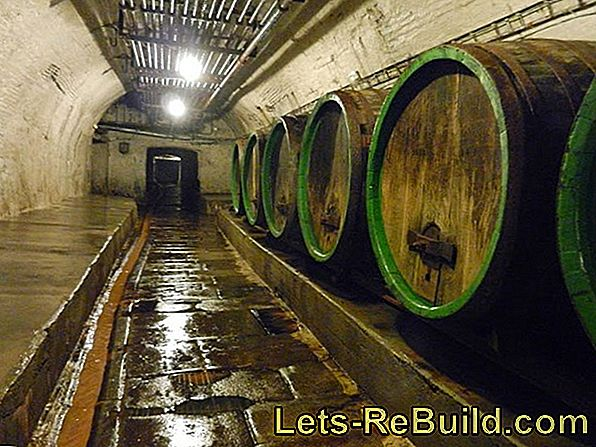Moist and musty cellars - a relic from the past?