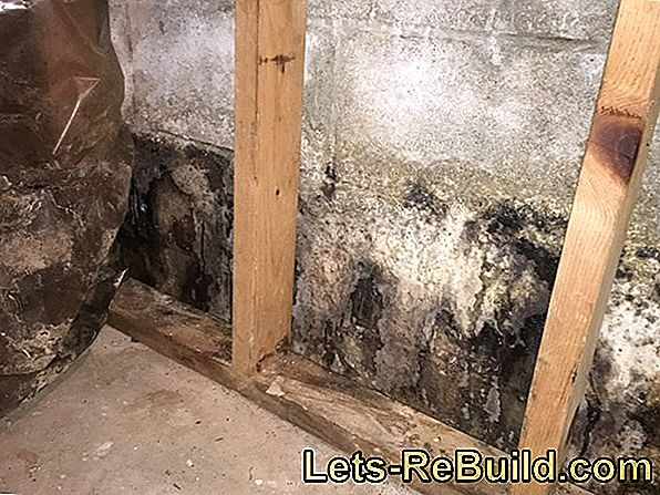 Moist Walls In The Basement » First Aid & Causes Determine