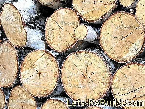 Birch wood - what price is required?