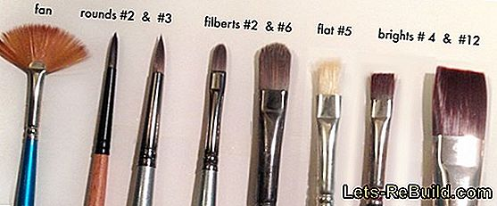 Brush Types » The Most Important Shapes And Materials