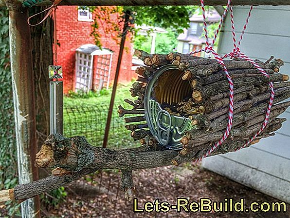 Build Bird Food House Yourself