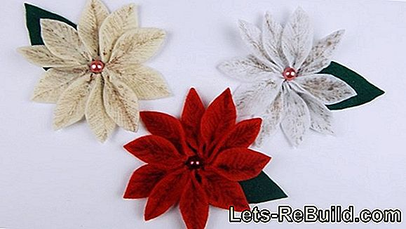 Crafting ideas for the poinsettia