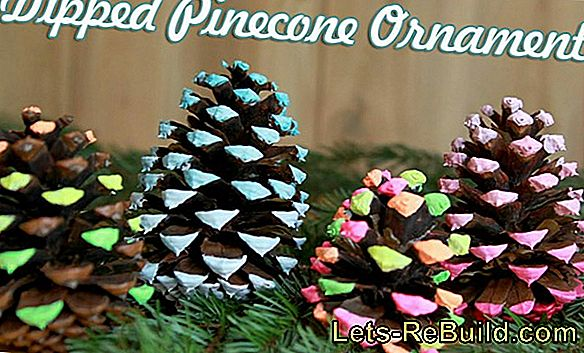 Making Pine Cones: Gnome, Pictures, Deco And Christmas Crafts With Pine Cones