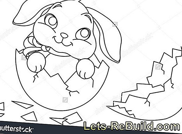 Easter Bunny And Easter Egg Coloring Pages