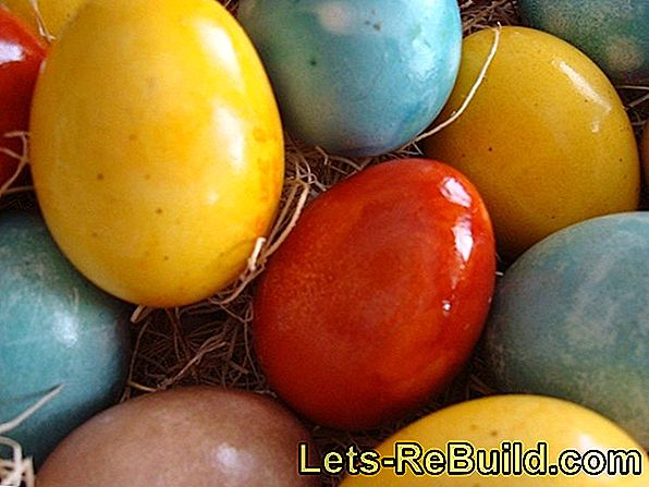 Coloring easter eggs naturally with natural colors - Coloring multicolored eggs