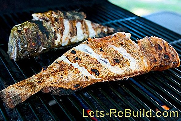 Fish barbecue - fish and seafood on the grill