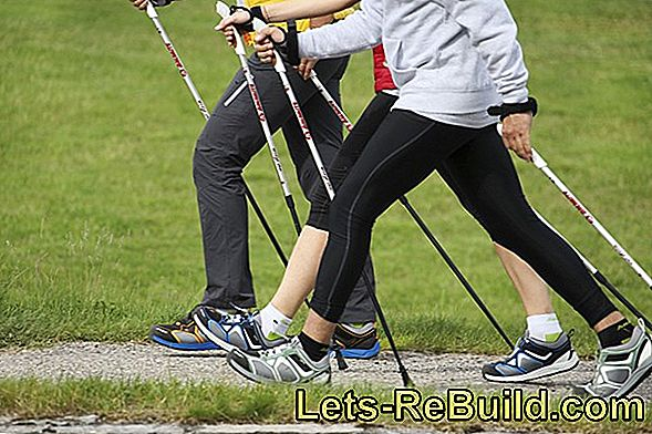 Nordic walking sticks comparison 2018