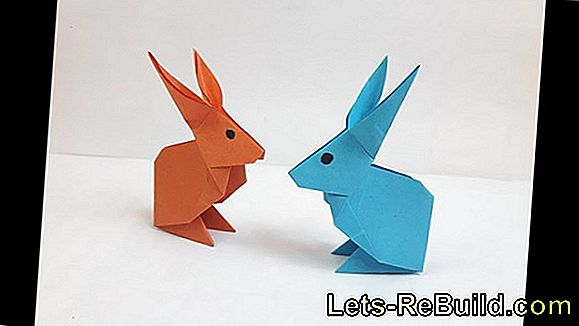 Rabbits Make Paper