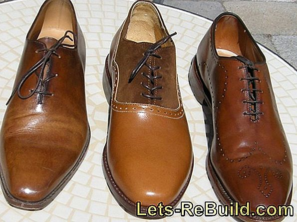 Shoe Shine Comparison 2018