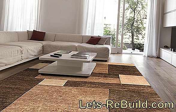 Carpet and living environment