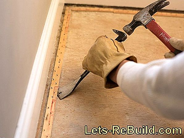 Remove the old carpet easily and effectively