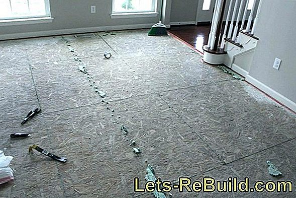 Remove Carpet » These Costs Are Expected