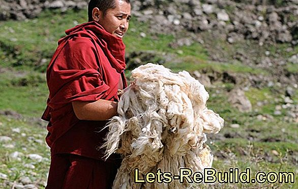 Cleaning Nepal Carpets » You Should Be Aware Of That