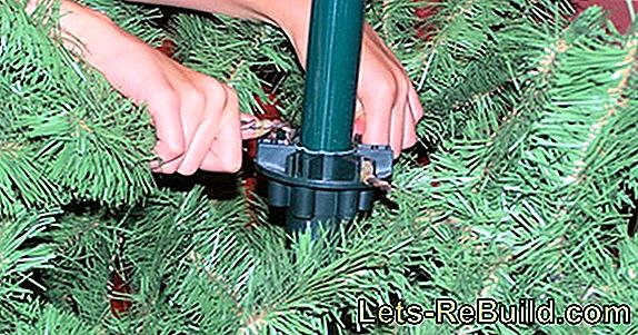 Hang The Christmas Tree » Tradition And Realization
