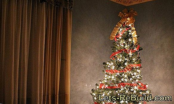 Set Up A Fir Tree » How To Do It Right (Christmas Tree)