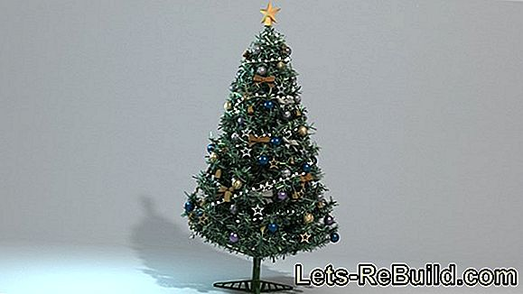 Christmas tree without needles - is that possible?