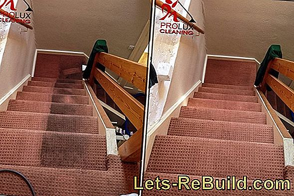 Clean Staircase » House Rules & Cleaning Plan
