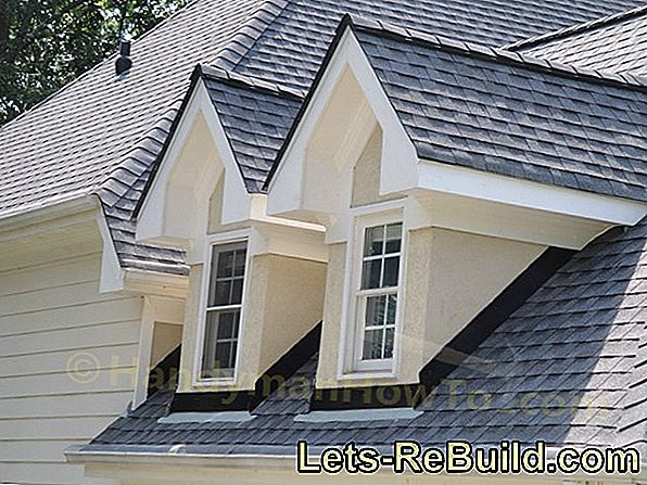 Dormer Species » These Are Available