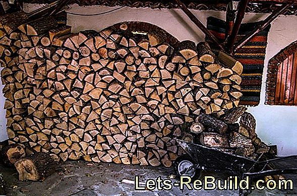 Find the best firewood