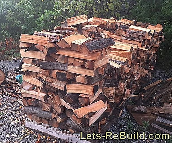 Firewood » What Role Does Moisture Play?