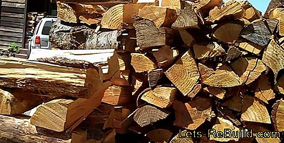 What to do if the firewood molds?