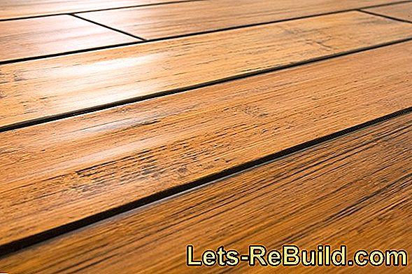 Which Types Of Wood Are There For Planks? » The Big Overview