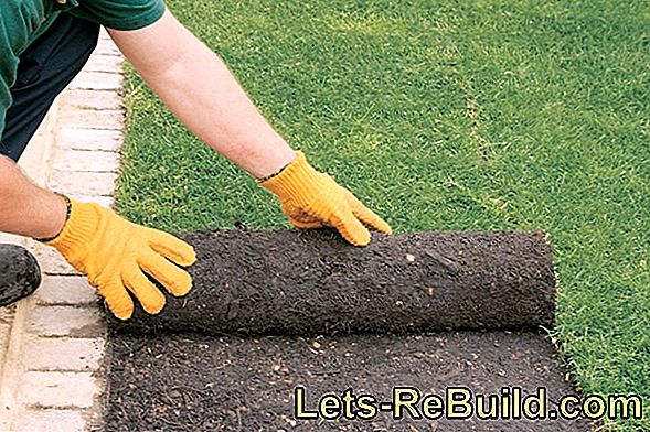 Laying drainage in the ground: What are the costs?