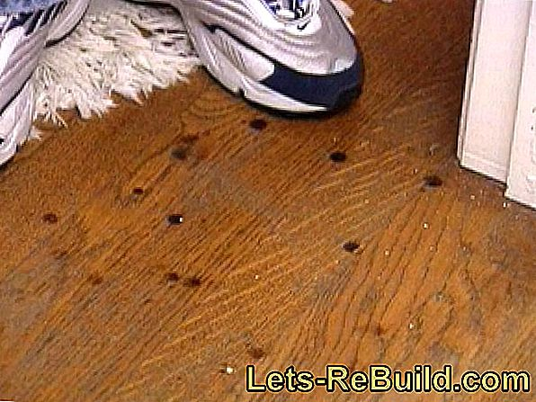 Grind Parquet - In 6 Steps To The Perfect Finish