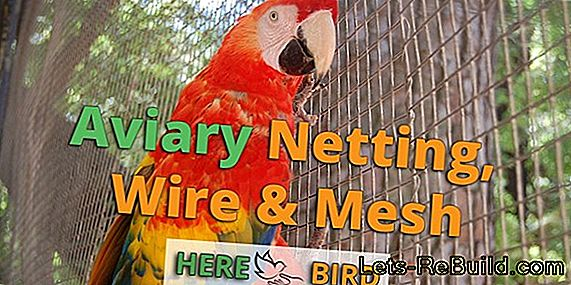 Aviary wire comparison 2018