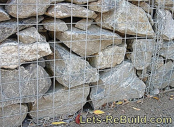 Plant Gabions » You Should Remember That