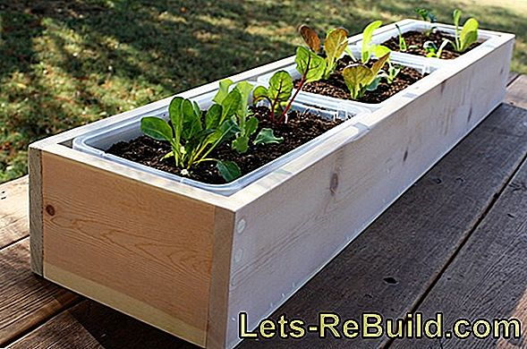 Build flower box yourself