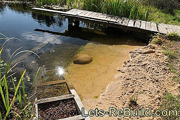 Build Swimming Pond Yourself