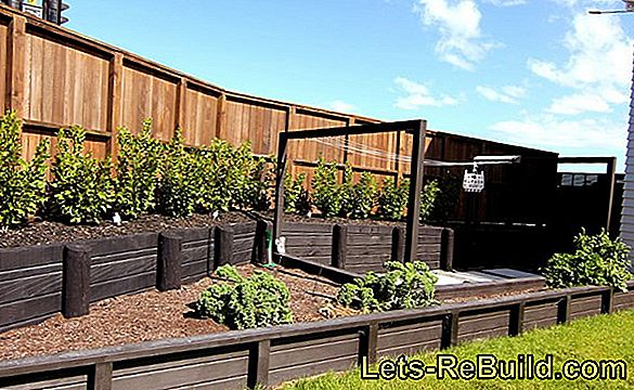 Create A Vegetable Garden Or Vegetable Patch