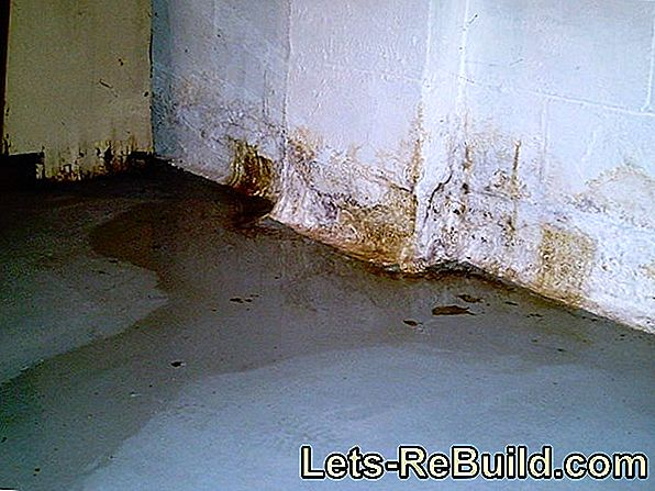 Gypsum Plaster Molds » How To React Correctly